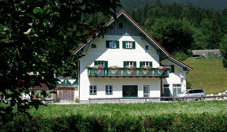 Unser Haus inmitten von Obertraun. (© Fritz Feuerer)