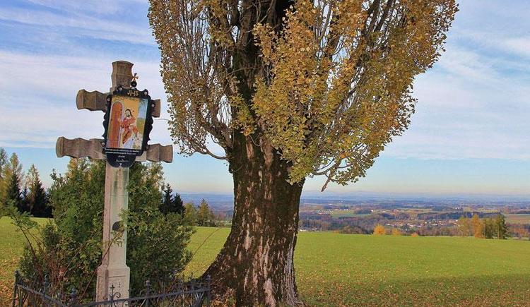 Hof Groß Höllnberg in Vorchdorf im Almtal im Herbst