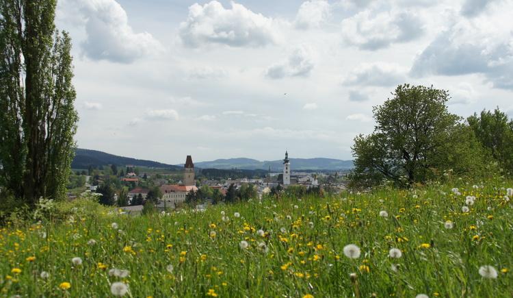 Ansicht Freistadt (© Petra Elmecker)