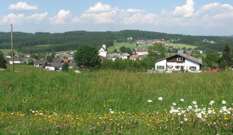 Sternguckerweg (© Gemeinde Sandl)