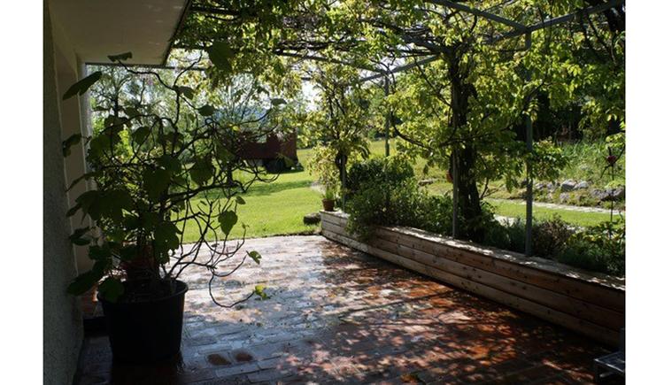 Terrasse  mit Schatten durch die Bäume, im Hintergrund Wiesen