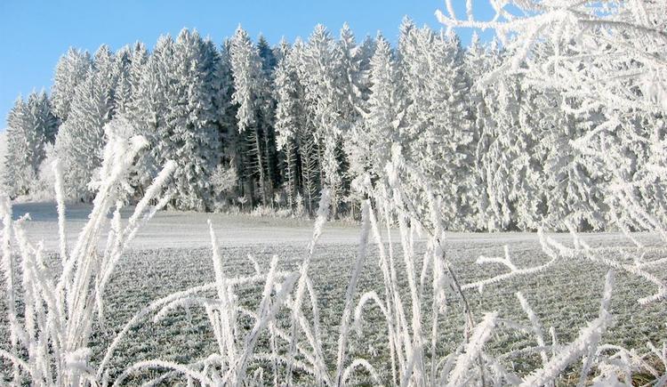 Winterlandschaft (© Schwarzmann)