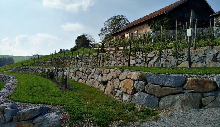 obsterlebnisgarten-innviertel-tourismus (© Innviertel Tourismus)