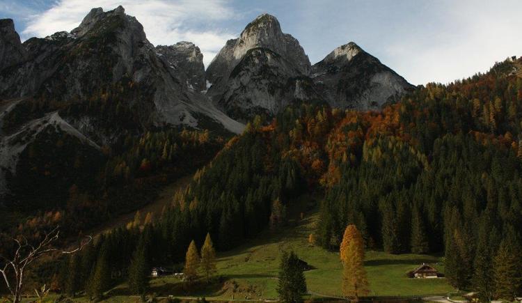 Bei uns finden Sie eine Vielzahl an unberührten Naturlandschaften.