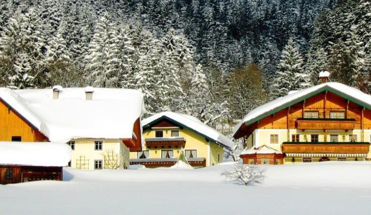 Wilkommensseite Winter