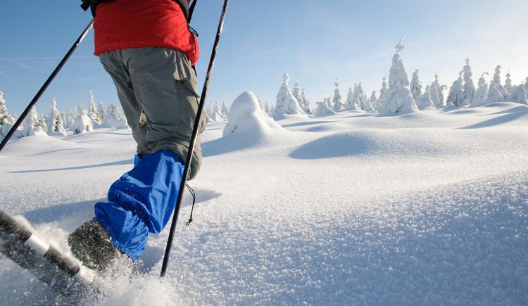 Schneeschuhwandern Mühlviertler Alm. (© Fotolia/WSA Liebenau)