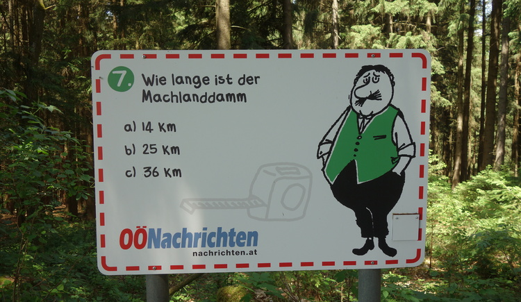 #7 (© Johann Mülleder)