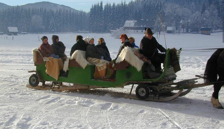 Romantische Pferdeschlittenfahrt zu Weihnachten. (© Hotel Gasthof Gosauschmied)
