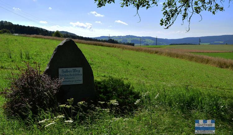 NWKW_Tag03_Guglwald. (© DI Gerd Simon, Alpenverein Freistadt, Arge Nordwaldkamweg)
