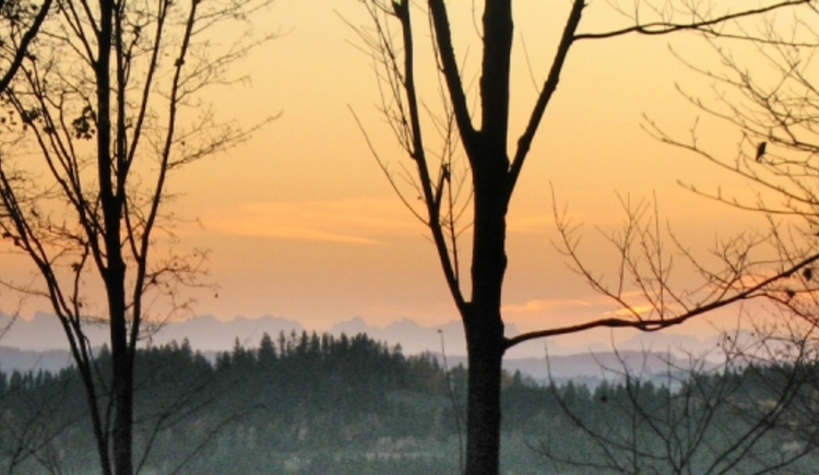 Zauberhafte Winterlandschaft in der Ferienregion Böhmerwald. (© Schwarzmann)