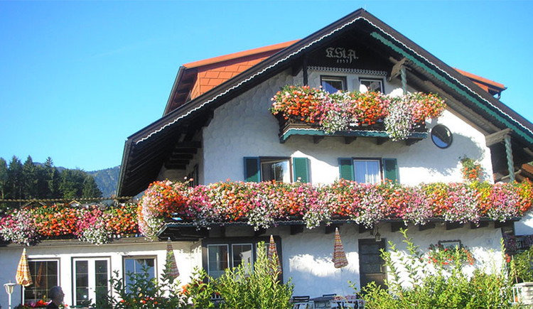 look at the guest house Geier with beautiful balcony flowers