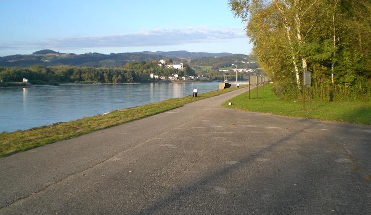 Donaublick vom Rastplatz Fischlehrpfad