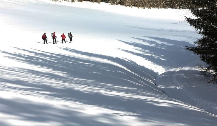 schneeschuhwandern-zu-bilderst-4_verkl (© Kössner)