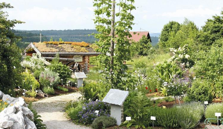 Gartenansicht Hildegardhaus (© Hildegardhaus)