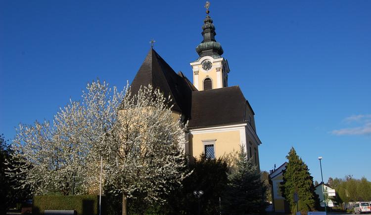 Schartern - zur Kirschbaumblüte.jpg