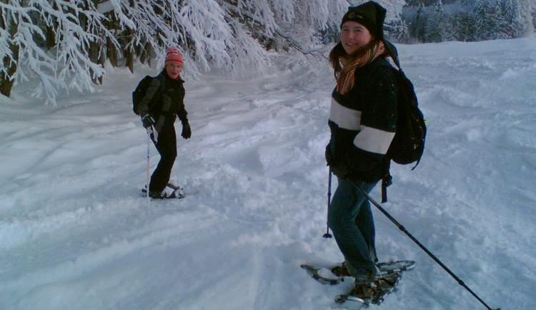 Ferienhaus Rosalinde - Schneeschuhwandern