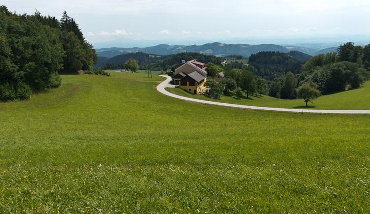 Donausteig-Gipfel Panoramablick Wetzelstein. (© WGD Tourismus GmbH / Kranzmayr)
