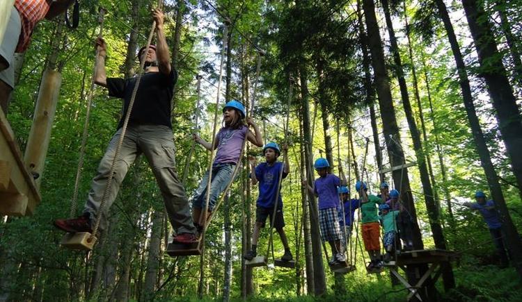 Waldkletterweg Kinder (© Tourismusverband Faistenau)