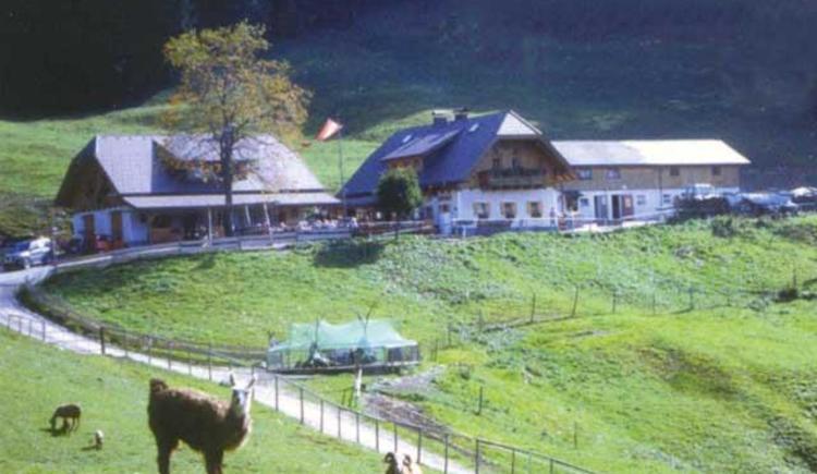 almgasthof Hochsteinalm (© Almgasthof Hochsteinalm)