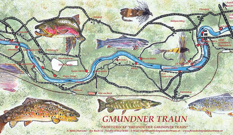 Revierkarte Fischen Traun (© Freunde der Gmundner Traun)