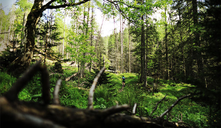 Wildererweg Abenteuer (© Daniel Hinterramskogler)