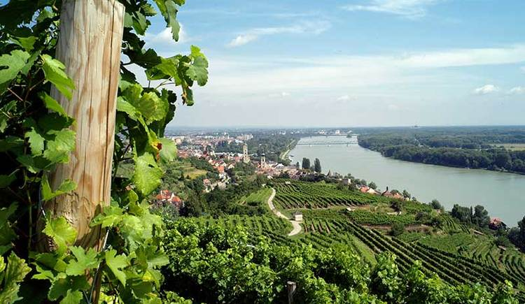 Blick in die Wachau mit Krems an der Donau (© K.M. Westermann)