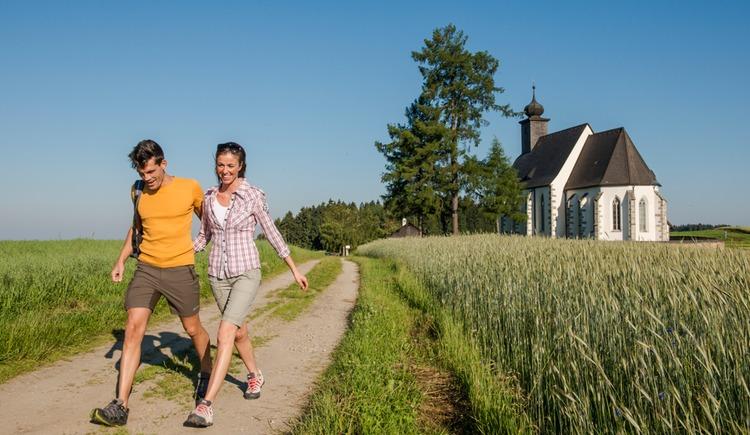 Wandern in Grünbach (© OÖTM Erber)