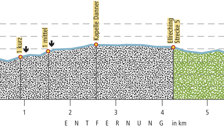 Profil-schlanke-linie.jpg
