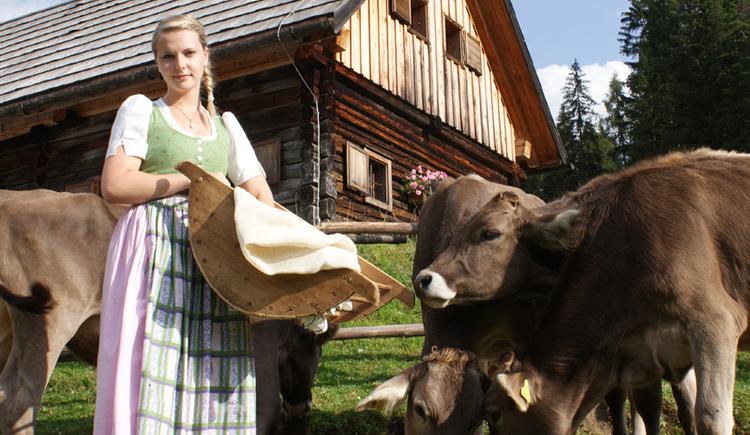 Ritzingerhütte auf der Viehbergalm