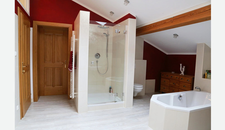 bathroom with shower, tub, toilet and towel drier