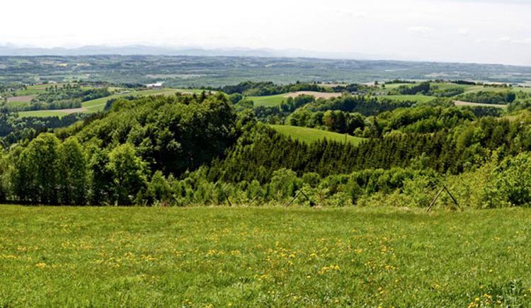 Panoramablick Gobelwarte
