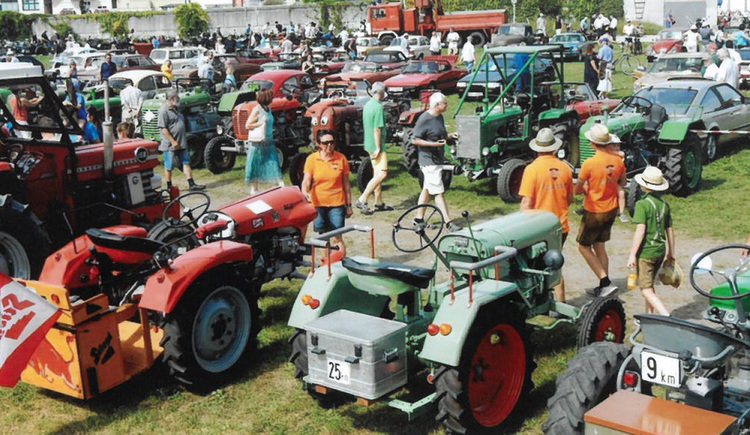 Old tractors are standing in the meadow, people
