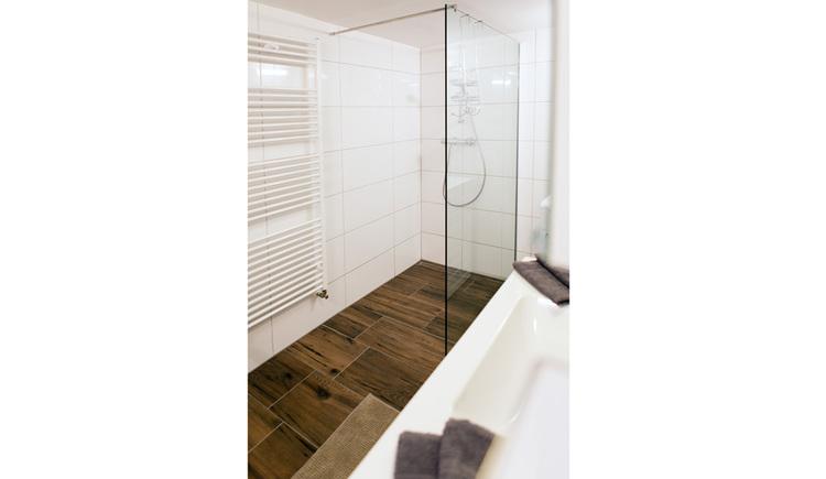 Badezimmer mit Dusche, seitlich ein Handtuchtrockner