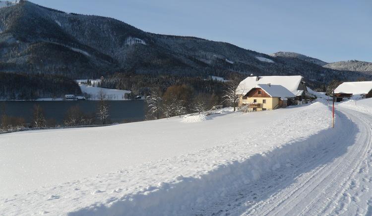 Feldbauer Winter (© Feldbauer)