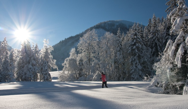 Cross country skiing through the snowy winter landscape (© Tourismusverband Faistenau)