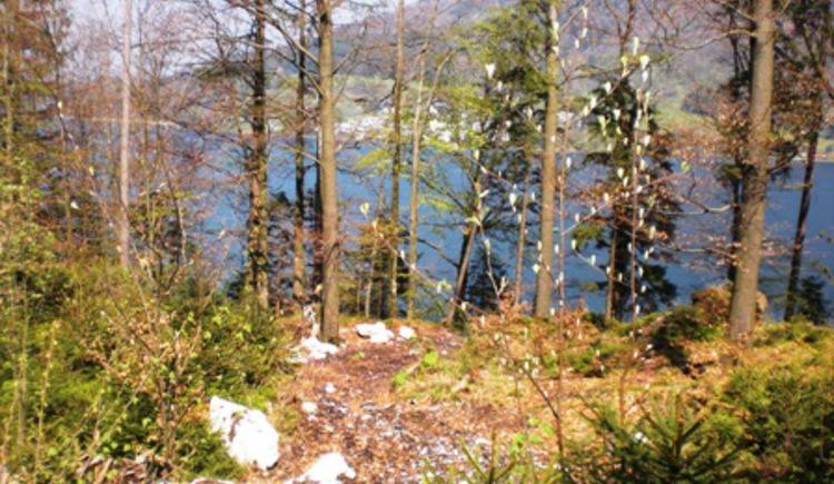 Ausblick 2 Seenweg