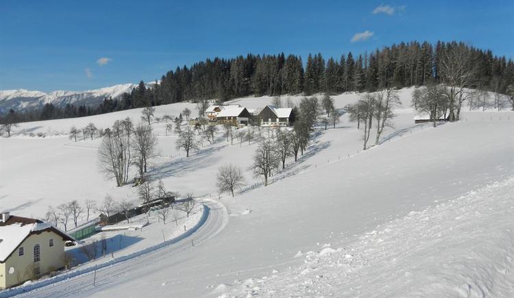 Panoramablick zum Moosgierler (© Redtenbacher)