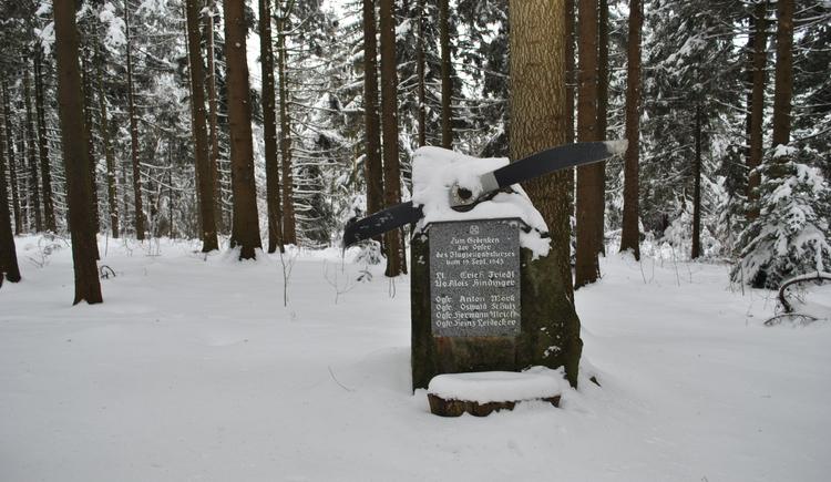 Fliegerabsturzstelle (© Gemeinde Vichtenstein)