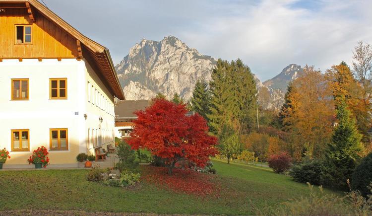 Herbstbild (© Unteres Feld)