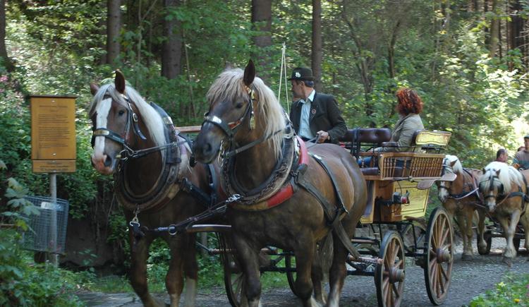 Pferdekutschenfahrt (© Lindorfer)