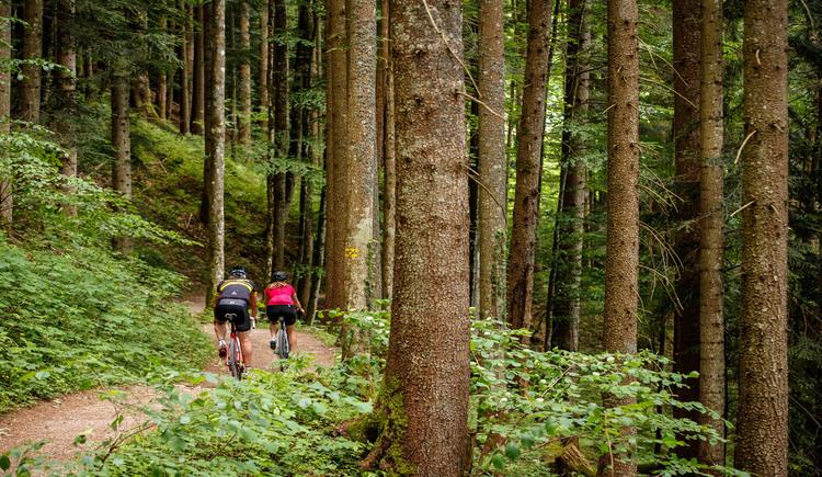 Von der Ewigen Wand geht es auf einem breiten Wanderweg zur Rathlucken Hütte. (© Erwin Haiden bikeboard.at)