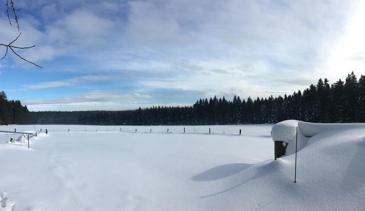 Landschaft im Winter 3 (© Privat)