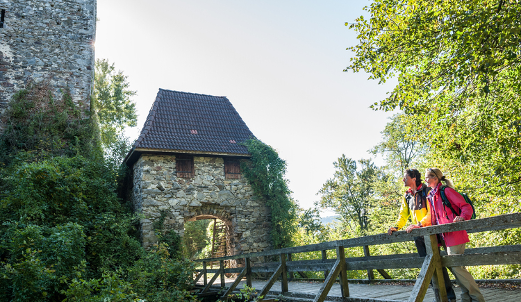 Donausteig - Ruine Haichenbach (© WGD Donau Oberösterreich Tourismus GmbH/Hochhauser)