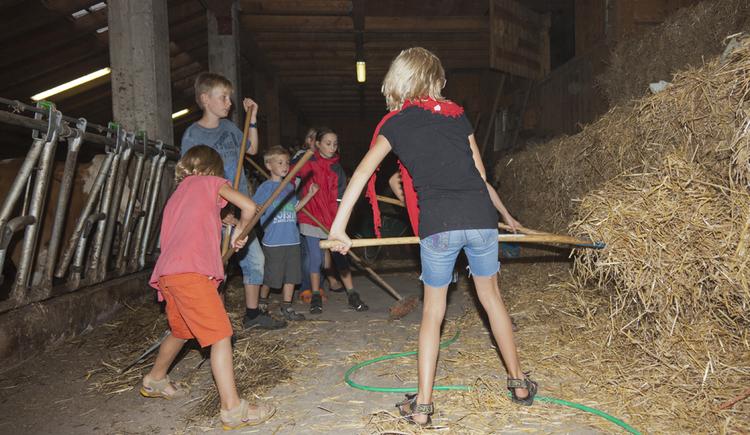 Ferienspass am Bauernhof Kirchbichl. (© Claudia Lumplecker)