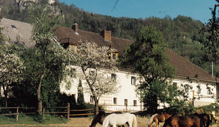 Am Fuße der Burg Altpernstein