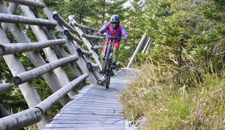 Downhillstrecke im oberen Teil (© Verein 50grad.at)