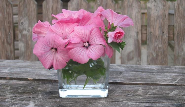 Blumen (© Unteres Feld)