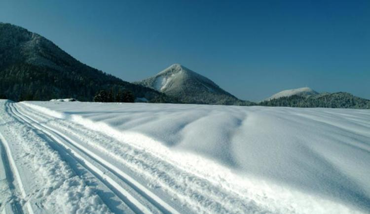 Ebenau Winter