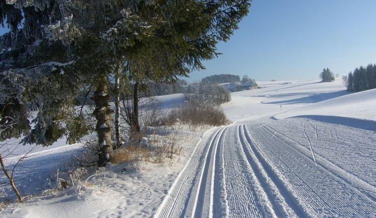 malerische Landschaft zum Langlaufen (© Helma Esterhammer)