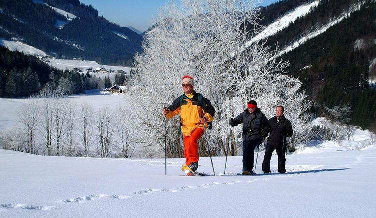 Schneeschuhwandern (© Tourismusverband Hintersee)